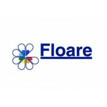 Флоаре